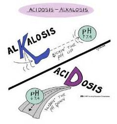 arterial blood gas - Yahoo Image Search Results