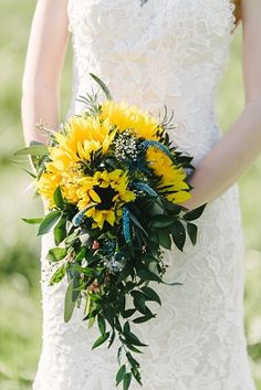 Cascading sunflower and blue veronica bridal bouquet.