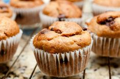 These vegan pumpkin muffins are moist chocolatey fluffy perfectly sweet and bursting with spiced Fall flavours! Sugar Free Recipes, Donut Recipes, Muffin Recipes, Dessert Recipes, Brunch Recipes, Pasta Recipes, Mini Chocolate Chip Muffins, Pumpkin Chocolate Chips, Mini Muffins