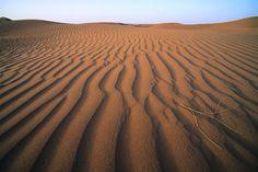 El Djouf Desert. Covers northeastern Mauritania and parts of northwestern Mali. It belongs to the Sahara Desert. Africa.