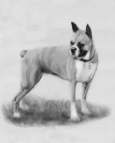 Commission a custom pencil drawing portrait of by richardromeroart, $59.00