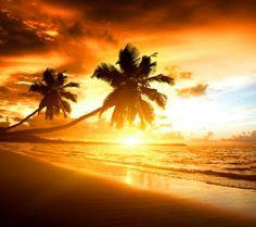 Karibik ♥