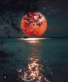 Фотографія - Photography, Landscape photography, Photography tips Moon Moon, Moon Art, Red Moon, Full Moon, Orange Moon, Beautiful Nature Wallpaper, Beautiful Moon, Beautiful Landscapes, Moon Photography