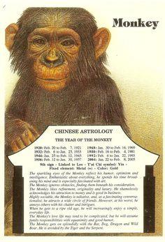 Zodiac Unlimited Chinese astrology postcard: Monkey