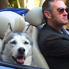 Morrissey in a convertible with a huskie, from The Importance of Being Morrissey #BBC