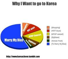 Can't say that this is a lie... Although I would give Korean food a bigger piece of the chart, because KOREAN FOOD IS SO GOOD. Om Nom Nom. ^_^