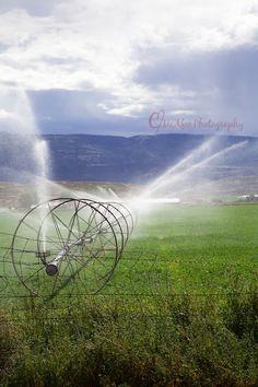 ~ Farming Perspective ~ Utah Landscape....