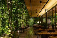 Photo Gallery of Ad Lib Bangkok Hotel | Bangkok Photos