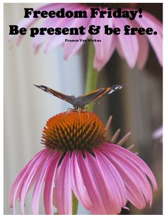 Take time to be present. The past will not matter, the future will not matter. Only now will matter.