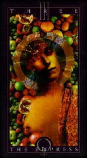 Examples of cards from the Vertigo Tarot Images pinned from Pinterest.  You can find more information about this deck here http://www.tarotacademy.org/vertigo-tarot-deck-set-20th-anniversary-edition