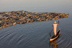 myanmar photos   Burma Tourism