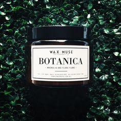 Wax Muse ; BOTANICA - Magnolia and Ylang Ylang