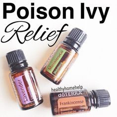 I know that I'm often posting tips using these three particular oils, but that is because I use h ALL the time!! ----------------A few days ago, someone who is new to essential oils sent me a message asking me if there was an oil she could use to help provide relief for her husband's poison ivy. Well, poison ivy is something that my husband is constantly getting, and essential oils have been a God-send for him, so I had just the answer... ---