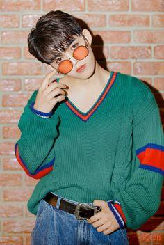 Carat Seventeen, Seventeen Album, Seventeen Scoups, Mingyu Seventeen, Woozi, Jeonghan, Lgbt, Won Woo, Vernon Hansol
