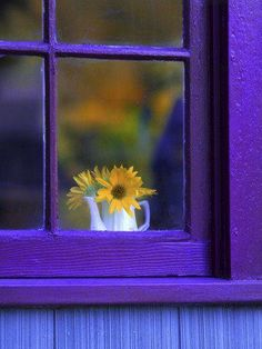 Blue and purple with yellow flowers in the window