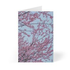 Excited to share this item from my shop: Cherry blossoms Greeting Cards 8 pc Stationary Birthday Cards Mothers Day Cards Thank You Cards Iphone 7 Cases, Iphone 7 Plus, Spiderman Phone Case, You Rock My World, Thanks Greetings, Holiday Messages, Personalized Greeting Cards, Iron Spider, Mothers Day Cards