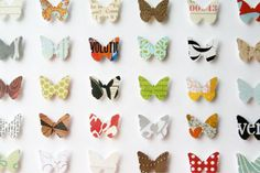 butterfly-collage.jpg