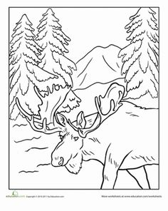 First Grade Animals Nature Worksheets: Alaska Moose Coloring Page Animal Coloring Pages, Colouring Pages, Coloring Sheets, Coloring Books, Forest Coloring Pages, Moose Pictures, Moose Pics, Wildlife Quilts, Free Adult Coloring