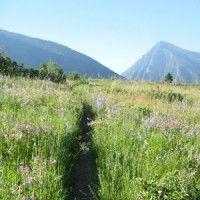 Livingston, Montana Hiking Guide