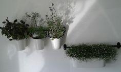 Ikea Fintorp in de keuken. Kruiden en gipskruid maken de sfeer, nog praktisch ook♡