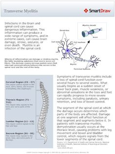 Image result for Living with Transverse Myelitis