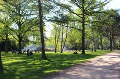 Hamburger Stadtpark - Hamburg city park