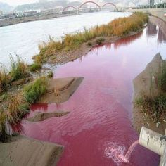 Pollution from textile industry, China