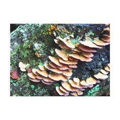 colorfull log parasites canvas print - beauty gifts stylish beautiful cool
