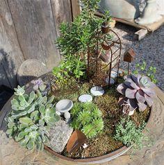 Jardim em miniatura