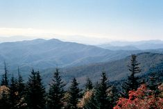 Great Smoky Mountains Natl Park.  Loved this park - I prefer Girl Mountains - softer than Boy Mountains.  The picture is from nps.gov.