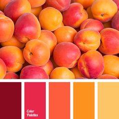 Color Palette #2708                                                                                                                                                                                 More