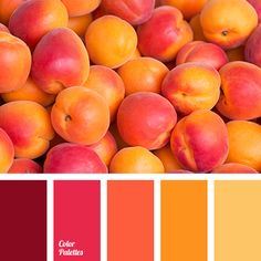 autumn shades, bright red color, brown color, color matching, color matching for autumn, maroon color, orange color, pale yellow color, palette for autumn, red color, saffron color, yellow shades.