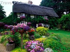 European+Cottages+Forest+UK | Travel Pictures Travel, Image Ref 2804218 – 11th Century Thatched ...