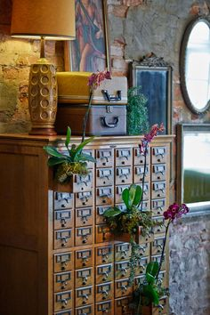 Viivid vintage style.  Library cad catalog as plant holder, vintage suitcases and a retro lamp.