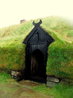 Viking Door! It's awesome! I love it!                                                                                                                                                                                 More