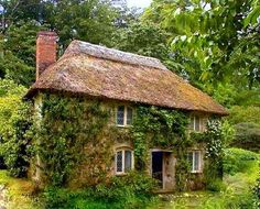 pagewoman:  sourceCottage in the Woods