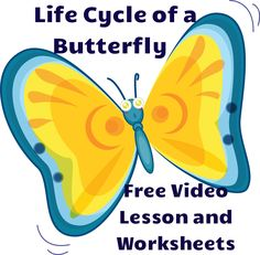 Observe and describe major stages in the life cycles of plants and animals, including beans and butterflies. Life Cycle of a Butterfly. Video lesson and worksheets! Science Resources, Teaching Activities, Science Lessons, Teaching Science, Science For Kids, Life Science, Sequencing Activities, Science Fun, Science Ideas