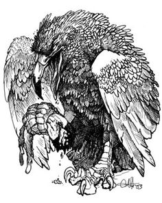 Hokhoku- North American  folklore: a huge bird that hunts and eats humans by crushing their skulls and eating their brains.