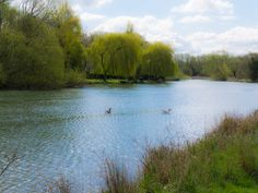 The story of the photographs – a walk along the Thames path to Oxford | Wicked Faerie