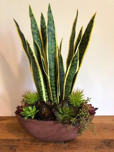 Artificial Succulents, Cacti And Succulents, Planting Succulents, Planting Flowers, House Plants Decor, Plant Decor, Container Plants, Container Gardening, Succulent Containers
