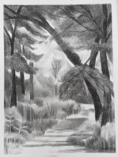 Charcoal Drawings Of Trees Charcoal Drawings, Trees, Gallery, Painting, Art, Art Background, Roof Rack, Tree Structure, Painting Art
