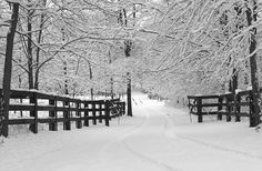 BEAUTIFUL!!  If it is going to snow, I want it to look just like this.