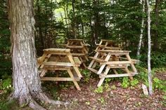 Google Image Result for http://img.ehowcdn.com/article-new/ehow/images/a07/jb/jp/picnic-table-wedding-ideas-800x800.jpg
