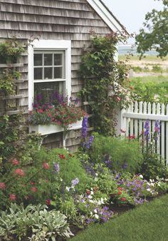 A Cape Cod seaside garden and cottage Seaside Garden, Garden Cottage, Home And Garden, Garden Living, Cottages By The Sea, Beach Cottages, Cape Cod Cottage, White Cottage, Cozy Cottage