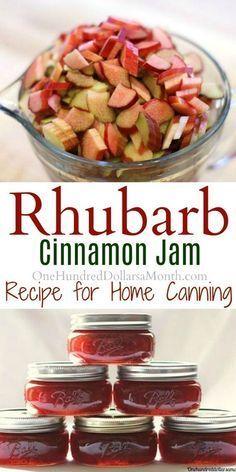 Canning 101 - Rhubarb Cinnamon Jam Recipe - One Hundred Dollars a Month - Amazing Foods Menu Recipes Canning 101, Jam And Jelly, Jelly Recipes, Drink Recipes, Wonderful Recipe, Dose, Pesto, Salsa, Goodies
