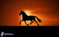 Silueta de caballo corriendo.