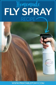 Stop spending hundreds of dollars on commercial fly spray and try our easy, cost effective homemade fly spray recipe instead! Homemade Fly Spray, Fly Spray For Horses, Pine Sol, Horse Behavior, Fly Control, Horse Care Tips, Horse Training Tips, Horse Fly, Horse Grooming
