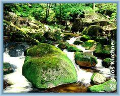 Horní tok Smědé