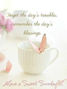Happy sunday a pin from my friend hantie xoxo Sunday Happy Hour, Happy Sunday Images, Lovely Good Morning Images, Hello Sunday, Good Morning Images Download, Blessed Sunday, Sunday Morning, Sunday Quotes Funny, Good Morning Quotes