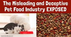 """""""Pet Fooled"""" is a documentary for pet owners that strips away some secrecy surrounding commercial pet food and the industry that produces and promotes it. http://healthypets.mercola.com/sites/healthypets/archive/2017/01/08/pet-fooled-pet-food-industry-documentary.aspx"""